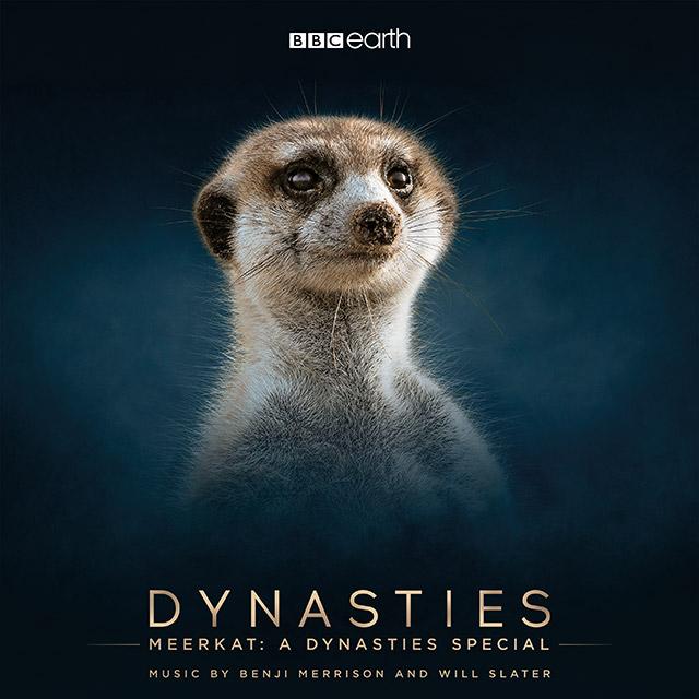 Meerkat A Dynasties Special 4 track EP